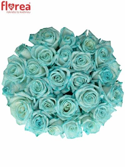 Kytice 25 ledově modrých růží ICE BLUE VENDELA 70cm