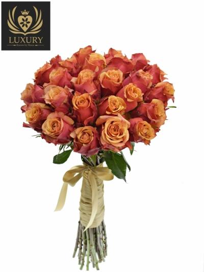 Kytice 25 luxusních růží CHERRY BRANDY 70cm