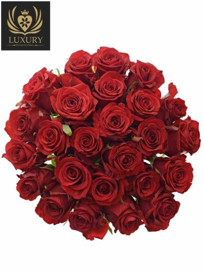 Kytice 25 luxusních růží RED EAGLE 60cm