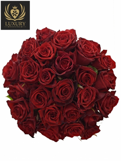 Kytice 25 luxusních růží TESTAROSSA 70cm