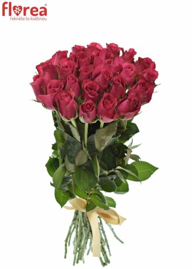 Kytice 25 malinových růží GRAND EUROPE 40cm