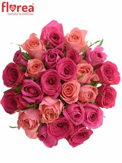 Kytice 25 míchaných růží ABERIA 40cm