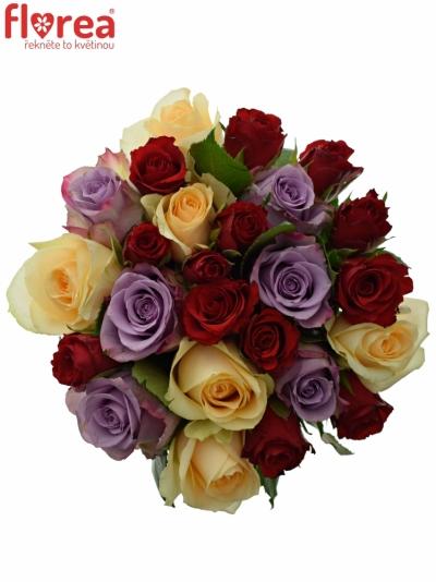 Kytice 25 míchaných růží BLUE AGATA 35cm