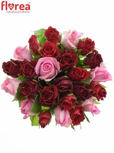 Kytice 25 míchaných růží DEVANIE 40cm