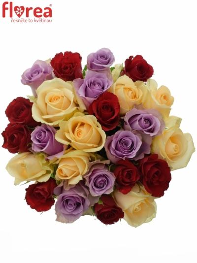 Kytice 25 míchaných růží DEVORAH 40cm
