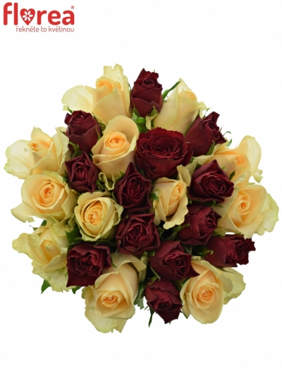 Kytice 25 míchaných růží PEACH MELORA 35cm
