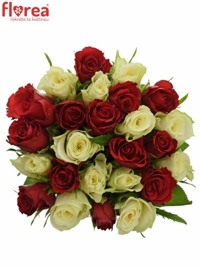 Kytice 25 míchaných růží AGATHA 40cm