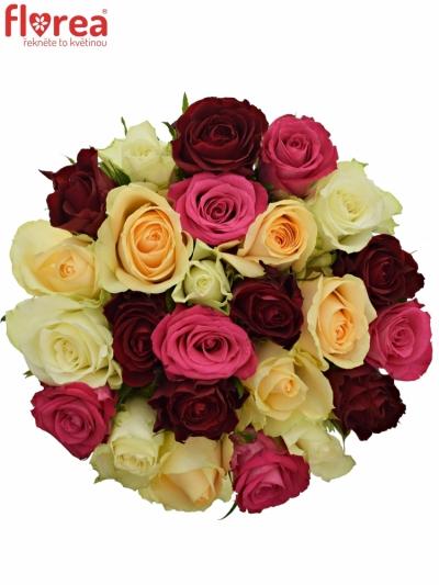 Kytice 25 míchaných růží AMALGITH 40cm