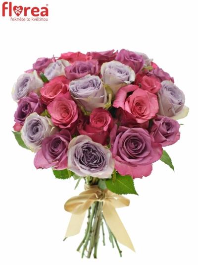 Kytice 25 míchaných růží DARIELLA 40cm