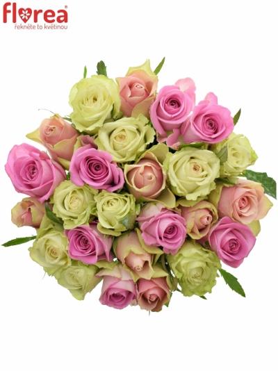 Kytice 25 míchaných růží FIOLA