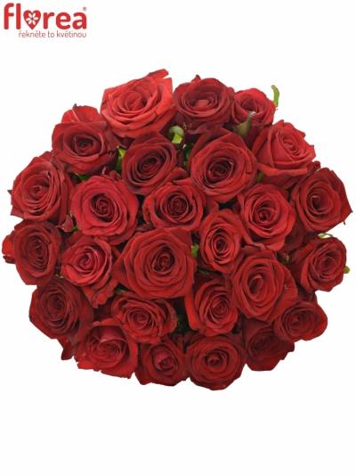 Kytice 25 míchaných růží JOANNA 55cm