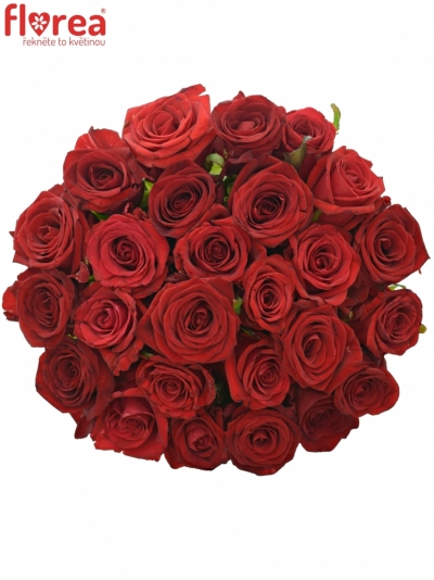 Kytice 25 míchaných růží JOANNA 70cm