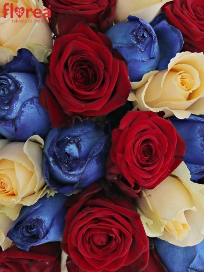 Kytice 25 míchaných růží MARRINETA 50cm