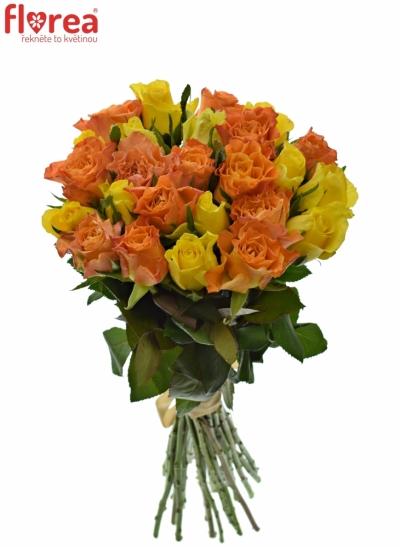 Kytice 25 míchaných růží MARYWALK 50cm