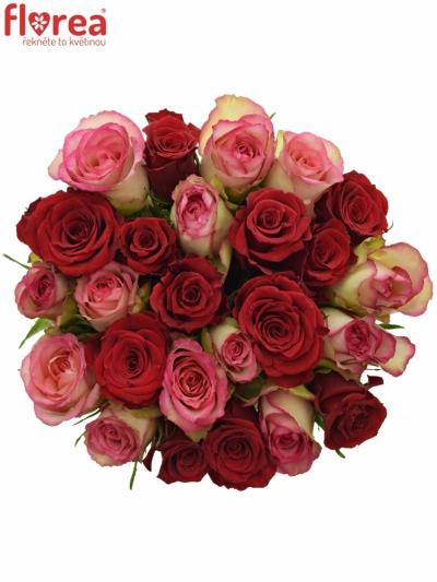 Kytice 25 míchaných růží ODETTE 60cm