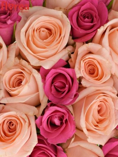 Kytice 25 míchaných růží PINACHE
