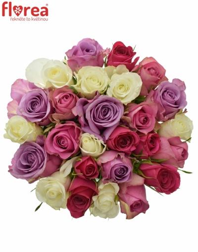 Kytice 25 míchaných růží PURPLE NAOMI