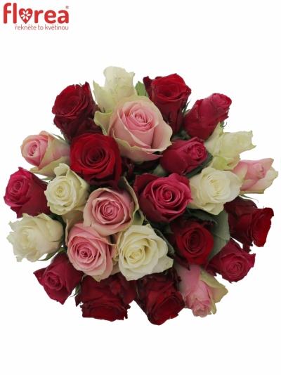 Kytice 25 míchaných růží RADWAN 50cm