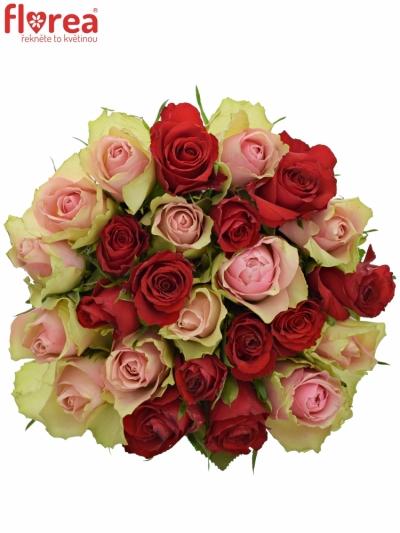 Kytice 25 míchaných růží ROSEBELLINE 50cm