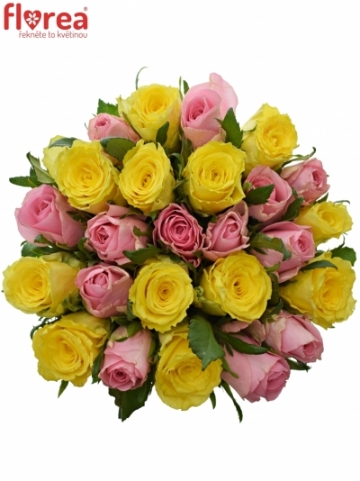 Kytice 25 míchaných růží SHANLEY 50cm