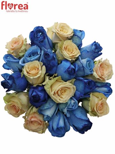 Kytice 25 míchaných růží SKYLA 50cm
