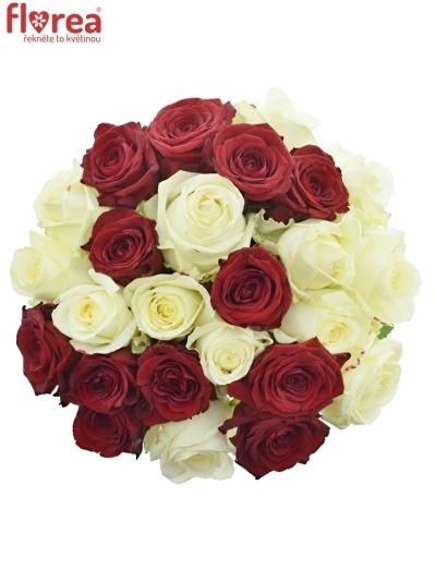 Kytice 25 míchaných růží THINA