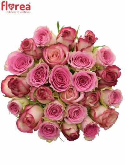 Kytice 25 míchaných růží TIMESTELLE 50cm