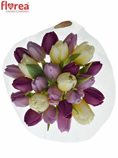Kytice 25 míchaných tulipánů PINK VALENTIN 35cm
