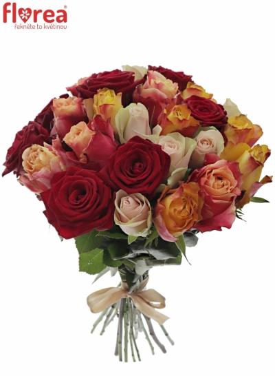 Kytice 25 míchaých růží PITTHEUS 50cm