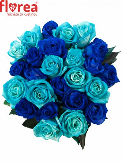 Kytice 25 modrých růží BLUE ADRIANA