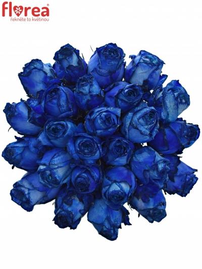 Kytice 25 modrých růží BLUE QUEEN OF AFRICA 50cm
