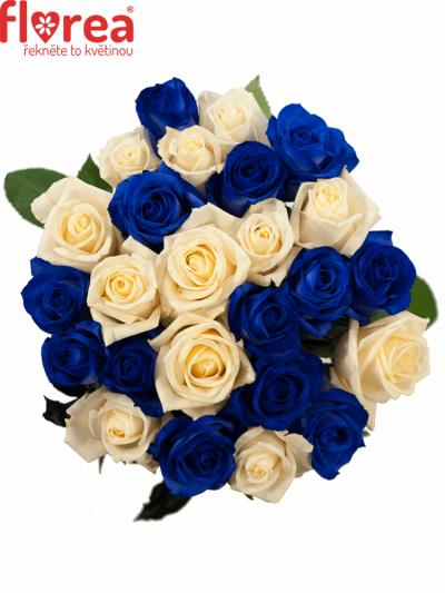 Kytice 25 modrých růží MARIANNA 50cm