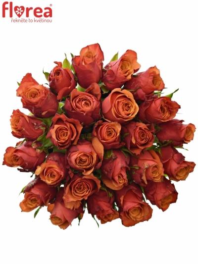 Kytice 25 oranžovočervených růží ESPANA 40cm