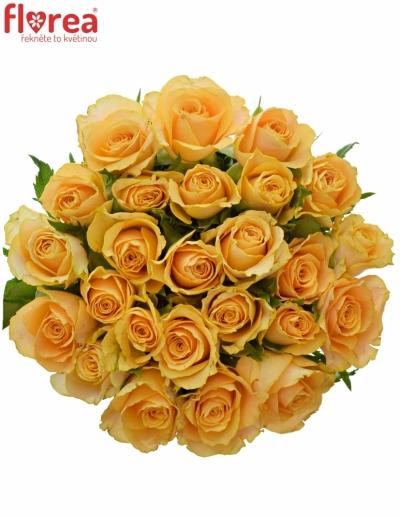 Kytice 25 oranžových růží CANDID PROPHYTA 50cm