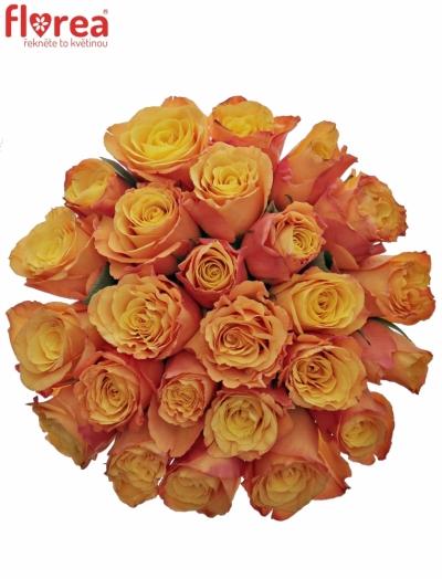 Kytice 25 oranžových růží CONFIDENTIAL 35cm
