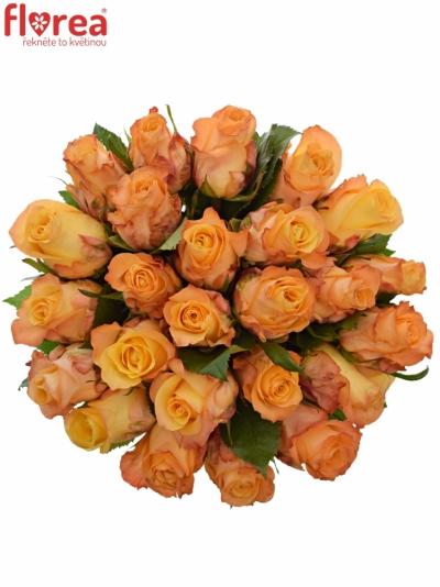 Kytice 25 oranžových růží MONALISA 50cm