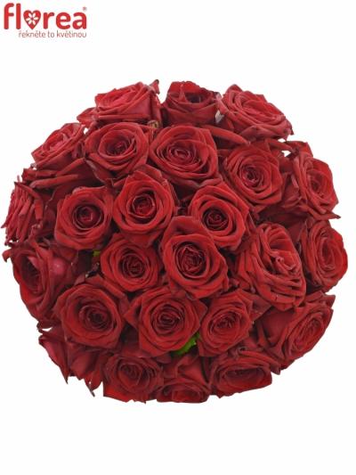 Kytice 25 rudých růží RED NAOMI! 30cm
