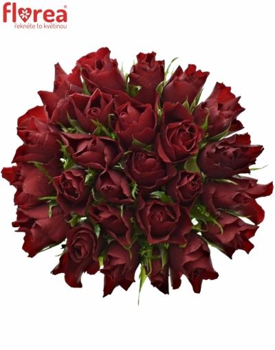 Kytice 25 rudých růží RED TIFFANY 50cm