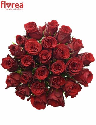 Kytice 25 rudých růží RED TORCH 70cm