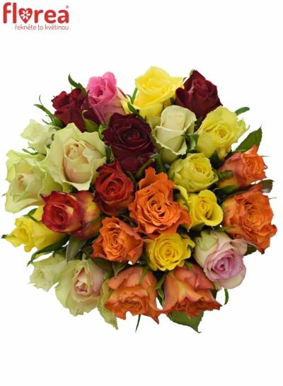 Kytice 25 růží MIX 40cm