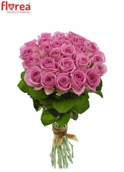 Kytice 25 růžových růží AQUA 55cm