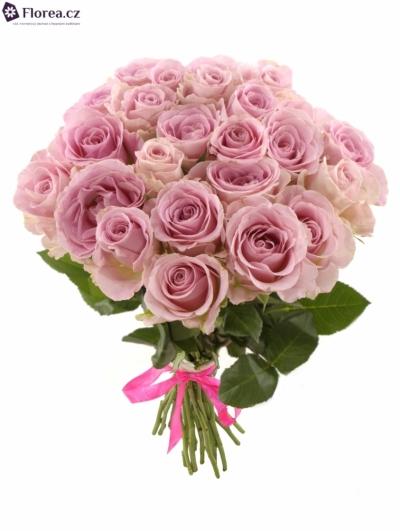 Kytice 25 růžových růží BABYFACE 40cm