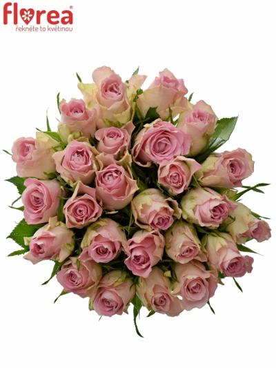 Kytice 25 růžových růží BISOU 50cm