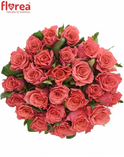 Kytice 25 růžových růží PINK TACAZZI