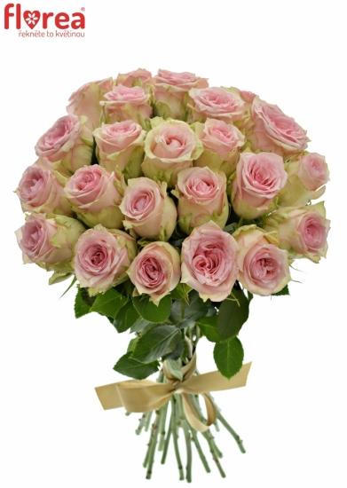 Kytice 25 růžových růží SUDOKU 50 cm