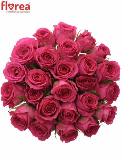 Kytice 25 růžových růží WINK 50 cm