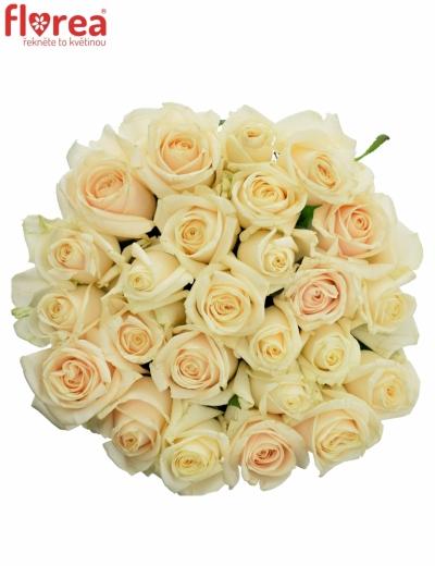 Kytice 25 smetanových růží VENDELA