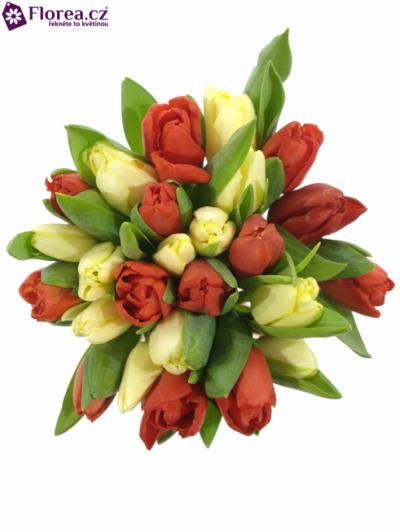 Kytice 25 tulipánů IONIA 35cm