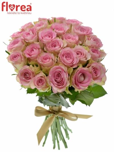 Kytice 25 žíhaných růží LOVELY JEWEL 40cm