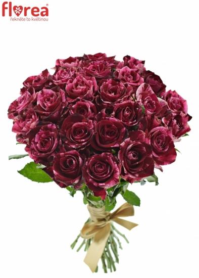 Kytice 25 žíhaných růží RED STORM